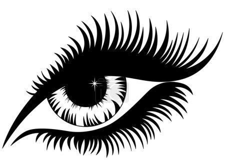 Illustration pour Oeil féminin silhouette noire isolé sur blanc, dessin à la main illustration vectorielle - image libre de droit