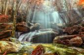 Waterfall with sunbeam in rainforest.