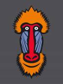 Mandrill monkey head