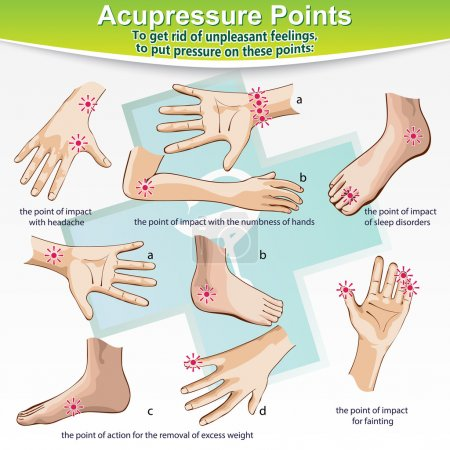 Massage Therapy Acupressure Points