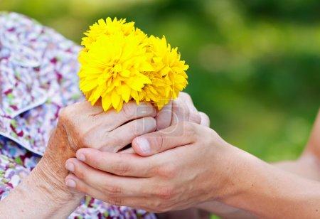 Photo pour Jeune homme donnant une fleur jaune à une femme âgée - image libre de droit