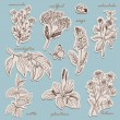 Herbs collection on tags in sketch style. Vector i...