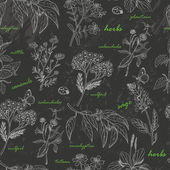 Vector seamless pattern with herbs on a dark background