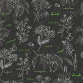 Vektorové bezešvé vzor s bylinkami na tmavém pozadí