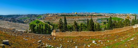 The Slope of the Mount of Olives