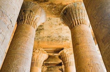 Photo pour Les colonnes de pierre avec l'ornement floral sculpté, les hiéroglyphes et les images des dieux antiques, Edfu, Egypte. - image libre de droit