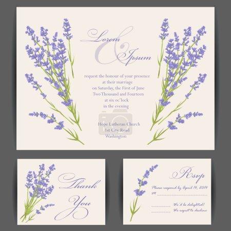Illustration for Wedding invitation card with purple lavender flower. Vintage background. Vector illustration. - Royalty Free Image