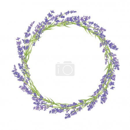 Illustration for Circle of hand drawn lavender flowers . Hand drawn design for Thank you card, Greeting card or Invitation. Vector illustration. - Royalty Free Image