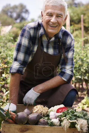 Senior man with organic vegetables