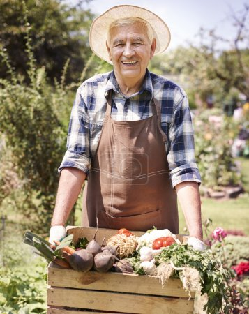 Photo for Senior man with organic vegetables from my garden - Royalty Free Image