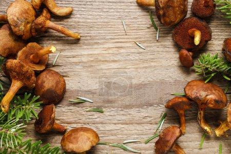 Leccinum mushrooms (aspen mushrooms) on wooden background.