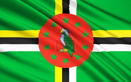 Photo pour Flag of Dominica - adopted on 3rd November 1978, with some small changes having been made in 1981, 1988, and 1990. Features the national bird, the Sisserou Parrot. (Not to be confused with Flag of the Dominican Republic). - image libre de droit
