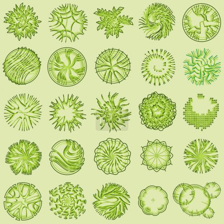Trees and bush item top view for landscape design, vector icon.