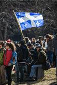 Někdo drží vlajky provincie Quebec v davu