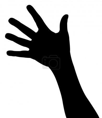 Lady hand silhouette vector