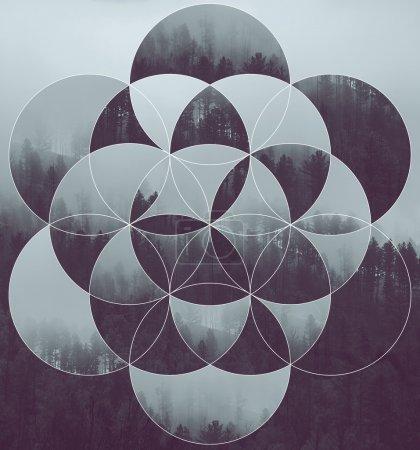 Photo pour Fond abstrait avec l'image de la forêt et de la fleur de vie. Harmonie, spiritualité, unité de la nature. Collage, mosaïque. - image libre de droit