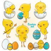 Easter eggs chicks Vector set