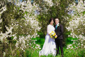 Young bride and groom in a lush garden in the spring. Groom and the bride in a white dress in the garden