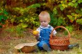 Malý chlapec s košem jablek a hrušek na podzim