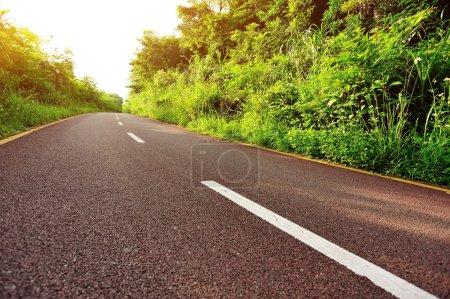 Photo pour Autobahn vide dans la forêt d'été - image libre de droit