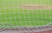 Soccer net with grass