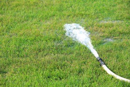 Irrigation turf stadium