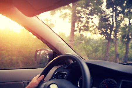 Hands on car steering wheel