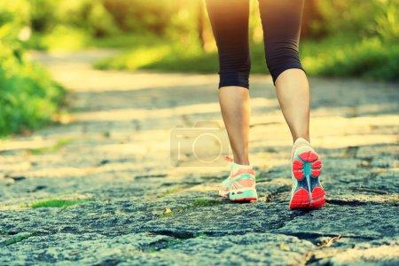 Photo pour Jeune femme fitness jambes au sentier forestier - image libre de droit