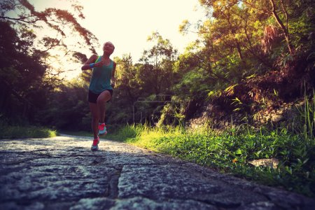 Photo for Runner athlete running on forest trail. woman fitness jogging workout wellness concept. - Royalty Free Image