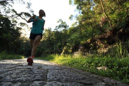 Photo pour Athlète coureur courant sur le sentier forestier. femme fitness jogging séance d'entraînement concept bien-être . - image libre de droit