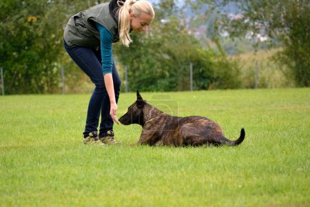 Young woman rewarded dog