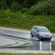 Постер, плакат: Spin rate with car driving training