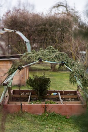 divided cold frame and provided with protective film