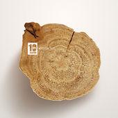 Vector Wooden Log