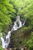 Torc Waterfall nr Killarney hrabství Kerry Irsko