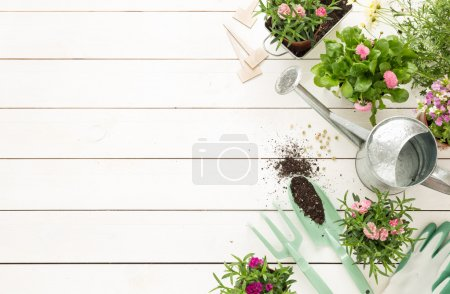 Spring - gardening tools and flowers in pots on white wood