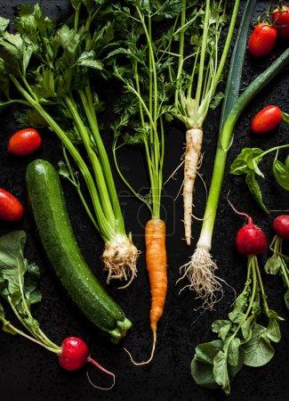 Young spring vegetables on black chalkboard