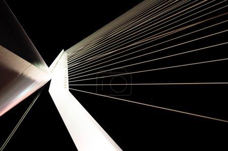Night view of the famous Erasmus Bridge