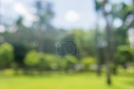 Photo for Fresh green bio background with abstract blurred foliage and bright summer sunlight. - Royalty Free Image