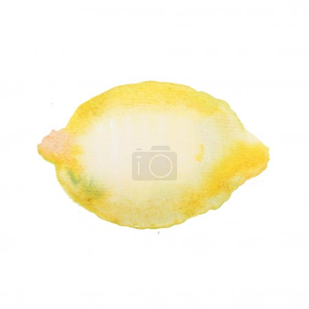 Hand drawn  watercolor lemon painting on white bac...