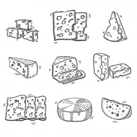 Hand drawn doodle sketch cheese with different types of cheeses in retro style stylized