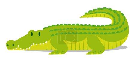 Cartoon Crocodile solated On Blank Background