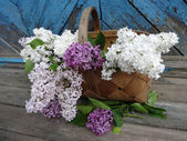 bouquet of lilac in a basket on old wooden background