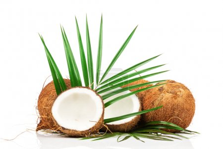 Coconuts with green palm leaves