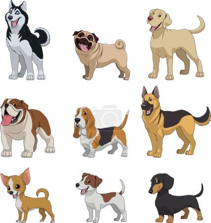 Illustration pour Illustration vectorielle, ensemble de chiens de race drôles, sur fond blanc - image libre de droit