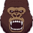 Angry gorilla head, vector illustration...