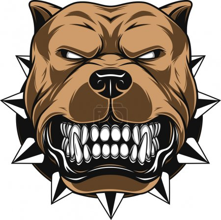 Illustration for Vector illustration Angry pitbull mascot head, on a white background - Royalty Free Image