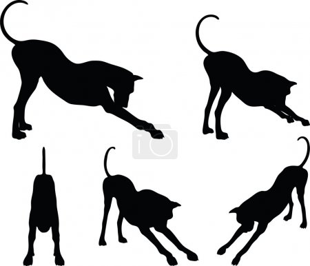 dog silhouette in stretch pose