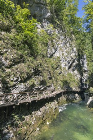 Vintgar gorge and wooden path. Bled,Slovenia.