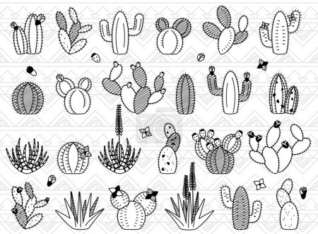 Illustration for Vector Set of Doodle Cactus and Succulent Plants - Royalty Free Image